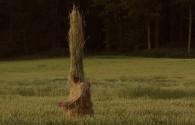 Мумий Тролль — Лира, новый клип