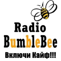 Логотип BumbleBee